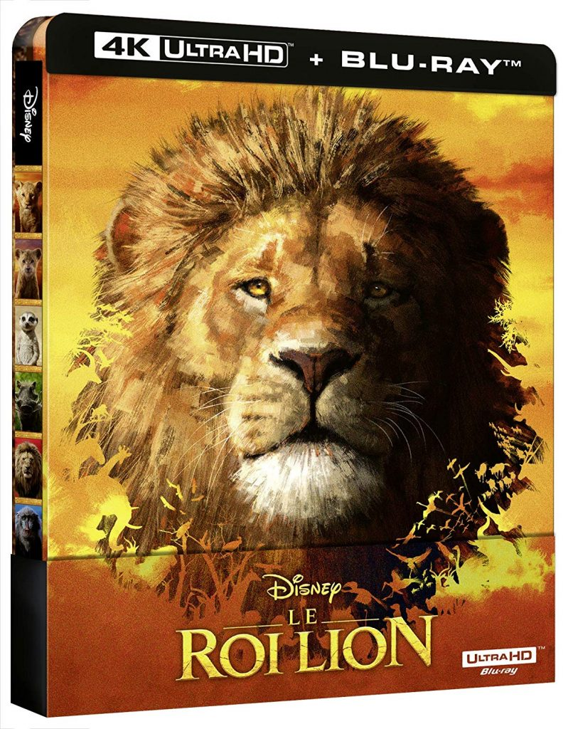 Le Roi Lion film dvd